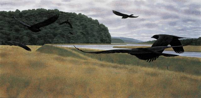 Seven Crows — painting by Alex Colville. Seven Crows 1980. Acrylic polymer emulsion on hardboard 60 x 120 cm. Owens Art Gallery Mount Allison ...