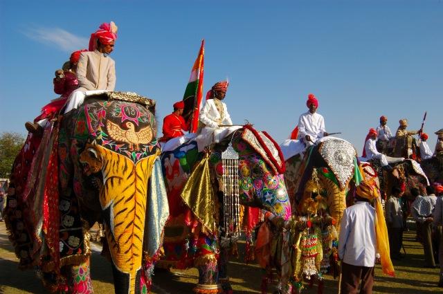 Elephant Festival, Japiur, Rajasthan