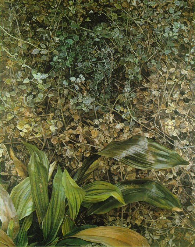 two-plants-1980